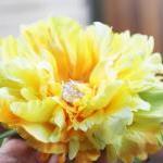 Sunbeam - sunshine yellow peony blo..
